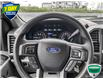 2019 Ford F-150 XLT (Stk: FD166A) in Sault Ste. Marie - Image 14 of 24