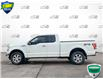 2016 Ford F-150 XLT (Stk: FD172BX) in Sault Ste. Marie - Image 3 of 22
