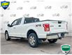 2016 Ford F-150 XLT (Stk: FD172BX) in Sault Ste. Marie - Image 4 of 22
