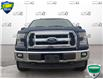 2017 Ford F-150 XLT (Stk: FD270A) in Sault Ste. Marie - Image 2 of 21