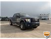 2009 Ford F-150 FX4 (Stk: 94374AZ) in Sault Ste. Marie - Image 1 of 19