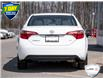 2019 Toyota Corolla LE (Stk: 7561A) in Welland - Image 5 of 23