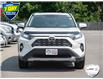 2019 Toyota RAV4 Limited (Stk: 7705A) in Welland - Image 6 of 26