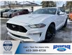 2020 Ford Mustang GT (Stk: L-310) in Calgary - Image 1 of 7