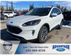 2021 Ford Escape SEL (Stk: M-261) in Calgary - Image 1 of 5