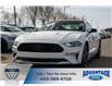 2021 Ford Mustang GT (Stk: M-410) in Calgary - Image 1 of 5