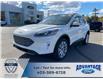 2021 Ford Escape Titanium (Stk: M-1289) in Calgary - Image 1 of 6