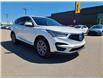 2019 Acura RDX Elite (Stk: 60063A) in Saskatoon - Image 6 of 17