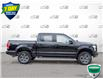 2016 Ford F-150 XLT (Stk: W0229AZ) in Barrie - Image 3 of 25
