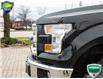 2016 Ford F-150 XLT (Stk: 6630) in Barrie - Image 10 of 23
