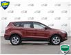 2014 Ford Escape SE (Stk: W0519A) in Barrie - Image 3 of 24