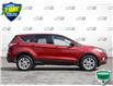 2017 Ford Escape SE (Stk: U1289A) in Barrie - Image 3 of 25