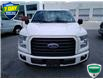 2016 Ford F-150 XLT (Stk: 6908A) in Barrie - Image 19 of 61