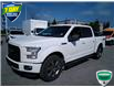 2016 Ford F-150 XLT (Stk: 6908A) in Barrie - Image 51 of 61