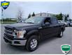 2020 Ford F-150 XLT (Stk: 6931) in Barrie - Image 10 of 29