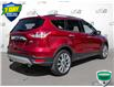 2015 Ford Escape SE (Stk: W0546A) in Barrie - Image 4 of 25