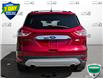 2015 Ford Escape SE (Stk: W0546A) in Barrie - Image 5 of 25