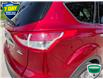 2015 Ford Escape SE (Stk: W0546A) in Barrie - Image 11 of 25