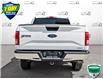 2015 Ford F-150 XLT (Stk: W0698A) in Barrie - Image 5 of 25