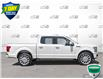 2019 Ford F-150 Limited (Stk: W0691A) in Barrie - Image 3 of 25