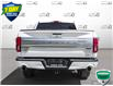 2019 Ford F-150 Limited (Stk: W0691A) in Barrie - Image 5 of 25