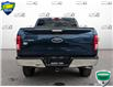2017 Ford F-150 XLT (Stk: W0613A) in Barrie - Image 5 of 24