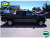 2015 Ford F-150 XLT (Stk: W0090AX) in Barrie - Image 2 of 28