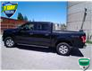 2015 Ford F-150 XLT (Stk: W0090AX) in Barrie - Image 6 of 28