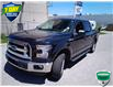 2015 Ford F-150 XLT (Stk: W0090AX) in Barrie - Image 7 of 28