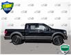 2016 Ford F-150 XLT (Stk: 6909A) in Barrie - Image 3 of 24