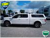 2018 Ford F-150 XL (Stk: W0808A) in Barrie - Image 6 of 30