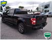 2020 Ford F-150 XLT (Stk: W0569A) in Barrie - Image 5 of 26