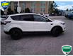 2018 Ford Escape SE (Stk: W0442A) in Barrie - Image 12 of 29