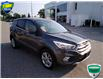 2017 Ford Escape SE (Stk: W0663B) in Barrie - Image 29 of 50
