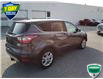 2017 Ford Escape SE (Stk: W0663B) in Barrie - Image 31 of 50