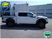 2019 Ford F-150 Raptor (Stk: W0909A) in Barrie - Image 12 of 42