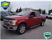 2018 Ford F-150 XLT (Stk: W0759A) in Barrie - Image 19 of 41