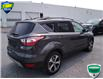 2017 Ford Escape SE (Stk: W0156A) in Barrie - Image 13 of 35