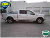2018 Ford F-150 XL (Stk: W0925A) in Barrie - Image 12 of 38