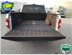 2018 Ford F-150 XL (Stk: W0925A) in Barrie - Image 15 of 38