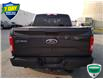 2017 Ford F-150 XLT (Stk: W0690A) in Barrie - Image 15 of 44