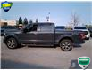 2017 Ford F-150 XLT (Stk: W0690A) in Barrie - Image 20 of 44