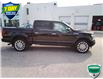 2018 Ford F-150 Limited (Stk: W0796A) in Barrie - Image 12 of 43