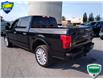 2018 Ford F-150 Limited (Stk: W0796A) in Barrie - Image 17 of 43