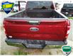 2018 Ford F-150 XLT (Stk: W0783AX) in Barrie - Image 8 of 33