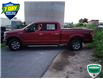 2018 Ford F-150 XLT (Stk: W0783AX) in Barrie - Image 10 of 33