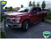 2018 Ford F-150 XLT (Stk: W0783AX) in Barrie - Image 11 of 33