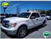 2013 Ford F-150 XLT (Stk: W0720BZ) in Barrie - Image 6 of 18