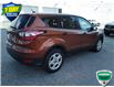 2017 Ford Escape S (Stk: W0408A) in Barrie - Image 3 of 21