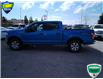2019 Ford F-150 XLT (Stk: W0490AX) in Barrie - Image 8 of 27